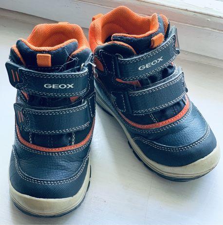 Зимние сапоги фирмы Geox для мальчика