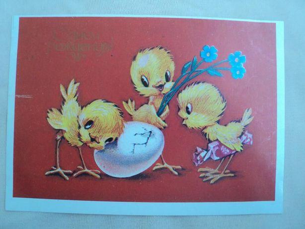 открытка СССР Четвериков 1984 Цыплята Цыпленок С днем рождения