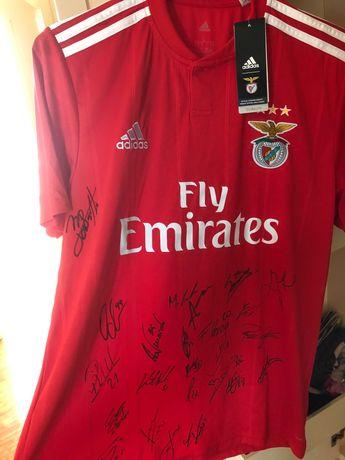 Camisola Principal Adidas Benfica Autografada