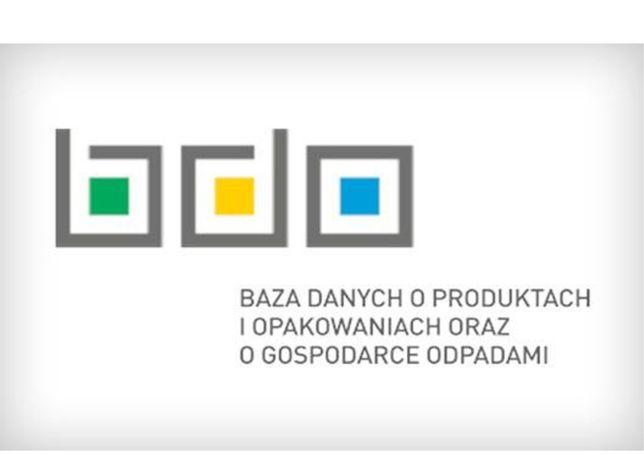 BDO -Sprawozdania i obsługa