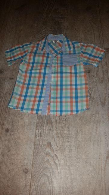 Koszula z krótkim rękawem rozmiar 92