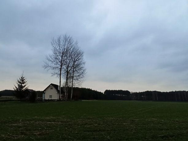 Działki budowlane 36 i 40 arowe w Skwirynowie