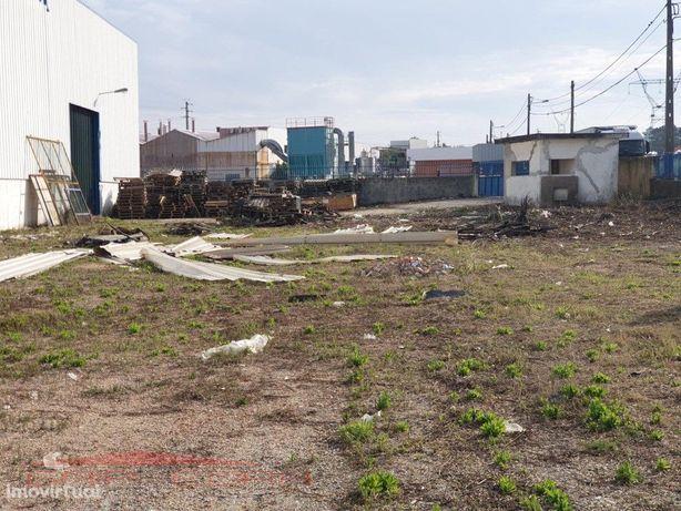 lote de 4 948 m2 com armazém industrial Oliveira do Bairro