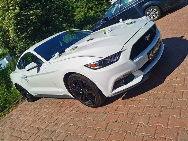 Wynajem Mustang, Auto do ślubu, Wynajmij samochod, Wypożyczalnia
