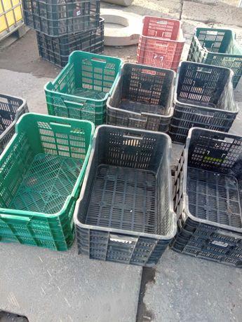 skrzynki plastikowe na warzywa