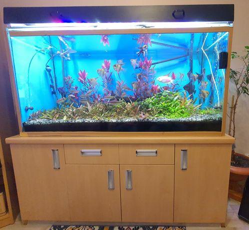Akwarium 540 litrow