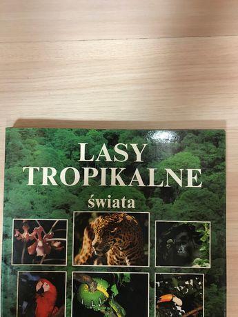 Lasy Tropikalne Świata album - piekne zdjęcia