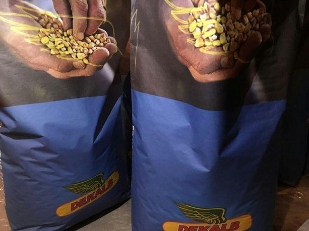 Семена кукурузы ДКС 3511 ФАО 330 Monsanto