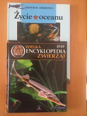 Życie oceanu. Ryby-wielka encyklopedia zwierząt. Dwie książki.