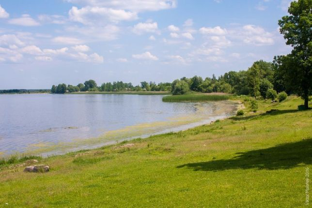 Продам земельну ділянку біля озера Домашнє с. Кримне