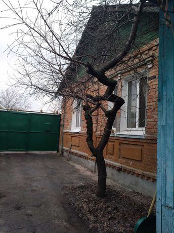 Продам дом на два входа 15 минут пешком   м. Холодная гора