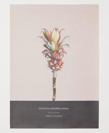 Plakat ANANAS H&M jasnoróżowy za pół ceny, nieużywany OKAZJA 50x70cm
