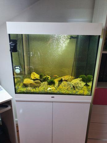 Akwarium Juwel Lido 200