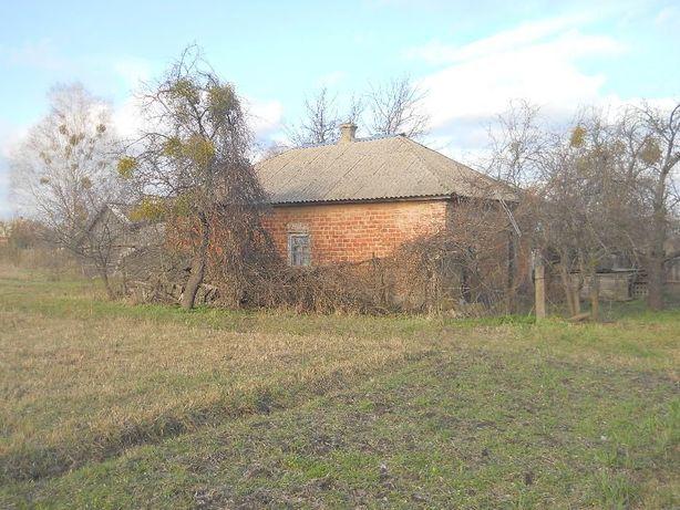 продам будинок з бруса в сільській мальовничій місцевості