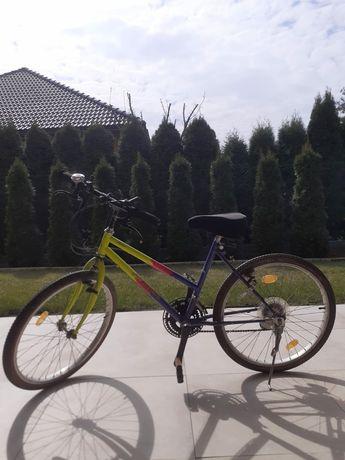 """Rower górski 22"""""""