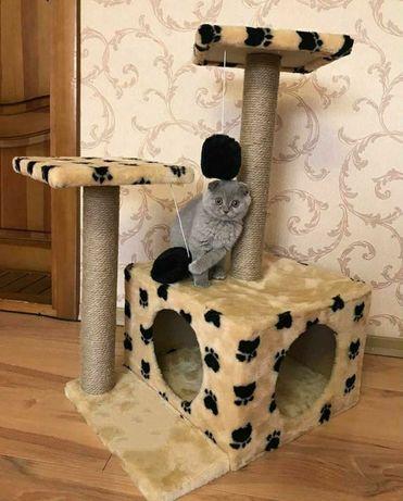 Домик-когтеточка, кошка , кот, котёнок