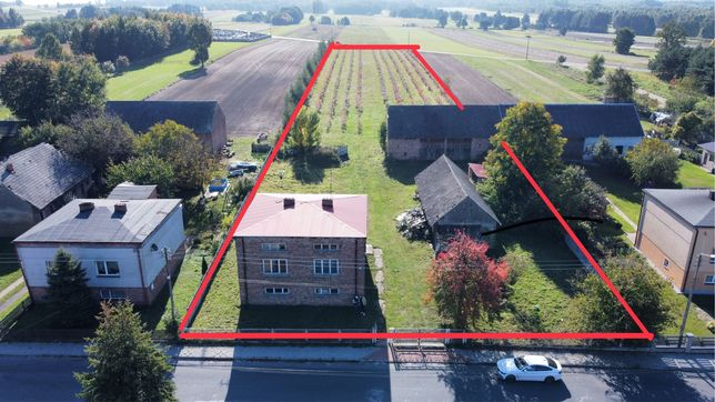 Dom gospodarstwo rolne borówka amerykańska plantacja okazja Złochowice