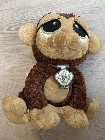 Małpka budzik