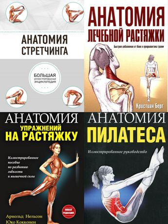 Анатомия стретчинга, анатомия пилатеса, анатомия лечебной растяжки