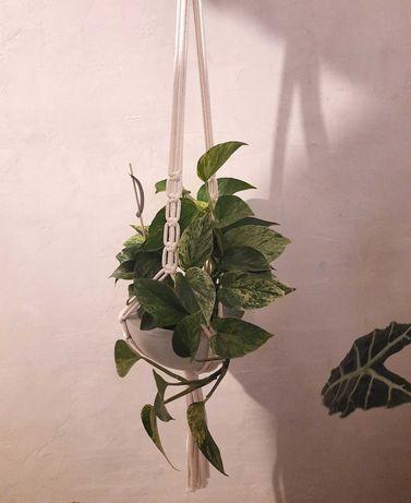 Makrama kwietnik - makrama z pasją 91cm