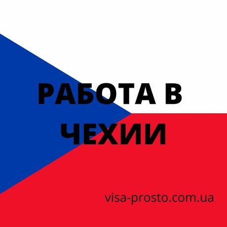 Рабочая виза и страховка в Польшу, Литву, Чехию