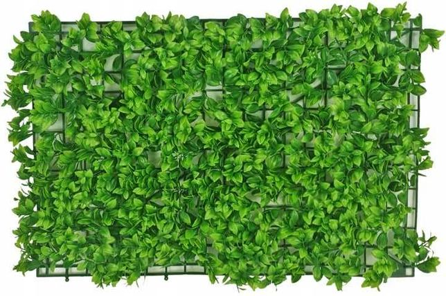 mata dekoracyjna rośliny