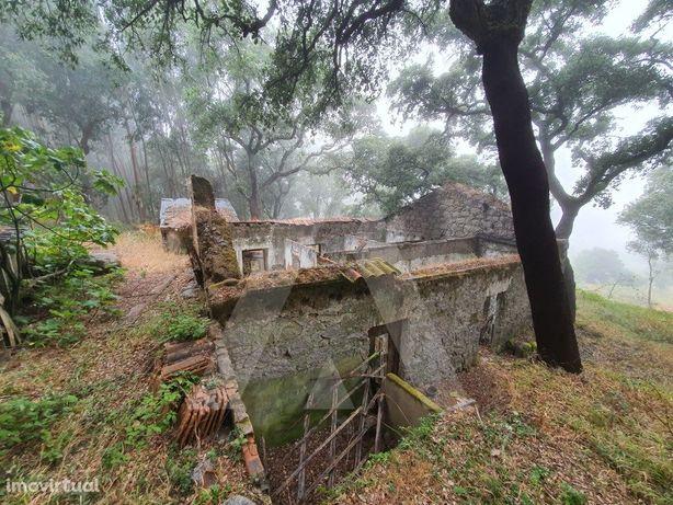 Terreno em Monchique com ruínas - Serra Algarvia.