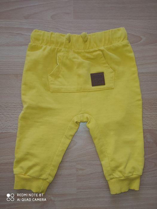 Spodnie 74 Solec - image 1