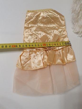 Sukienka dla małego pieska