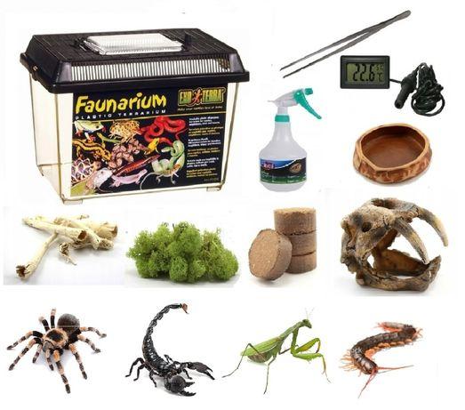 Zestaw do hodowli ptaszników skorpionów terrarium 9 rzeczy 30x19x20 cm