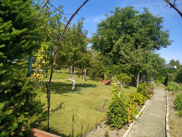 Działka ogrodniczo/rekreacyjna