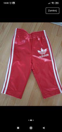 Spodenki dla chłopca niemowlaka adidas czerwone 68