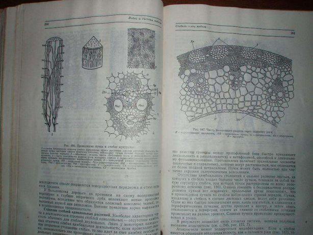"""продам книгу """"Ботаника-морфология и физиология растений"""""""