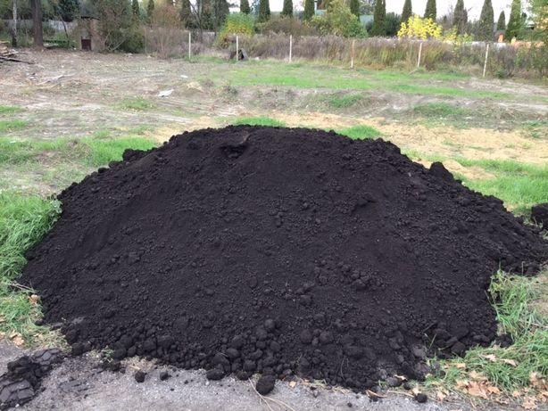 Чернозем,Торфяной чернозем