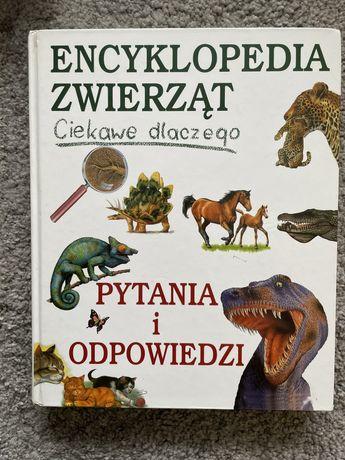 Encyklopedia zwierzat. Putania i odpowiedzi