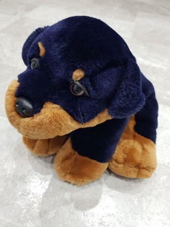 Szczeniak rottweiler Simply Soft Collection jak żywy 25cm- super stan!