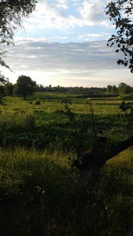 Продам участок земли с домом