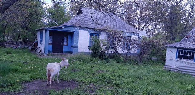 Продаю будинок в Шевченковім краю.