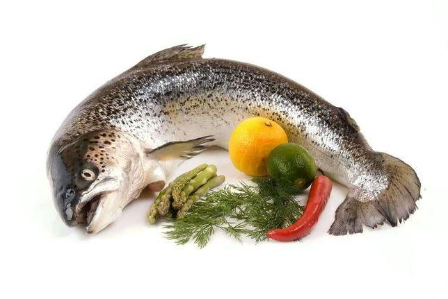 Лосось(семга) тушка охлажденная(красная рыба)