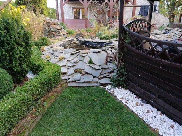 Zakładanie i pielęgnacja ogrodów