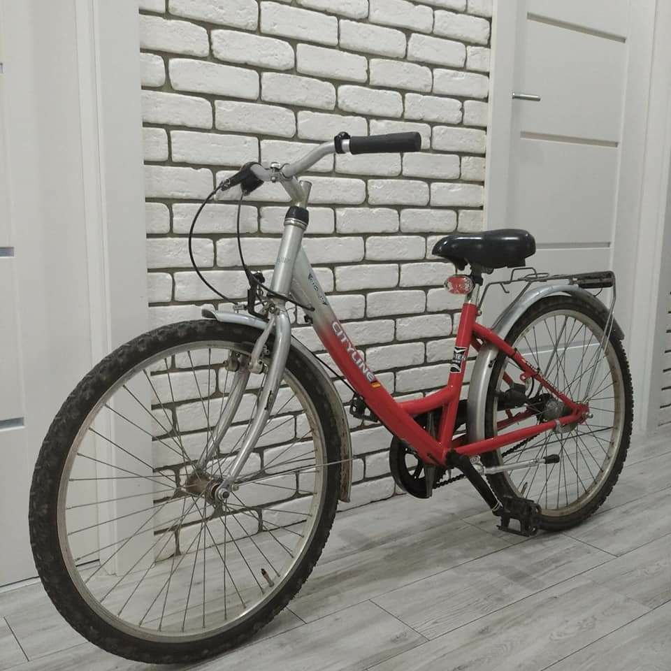Rower młodzieżowy damka 24