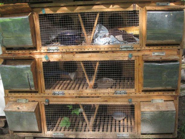 продам клітке для кролів
