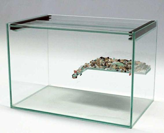 Aquário tartaruga com plataforma