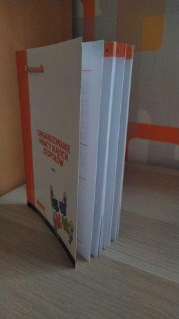 Podręcznik Organizowanie pracy małych zespołów