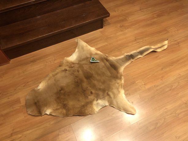 Skóra z kangura nowa z metką  z Australii dywanik australia kangur