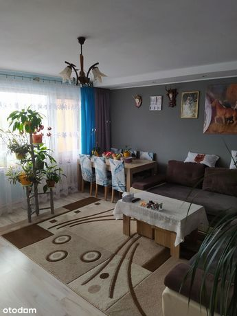 Mieszkanie Sienkiewicza 60m2