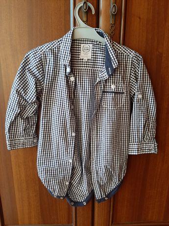 Koszula, koszulobody 92