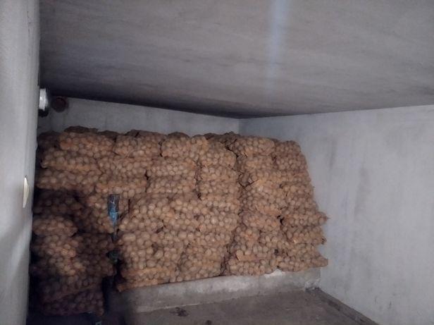 Sprzedam ziemniaki winieta