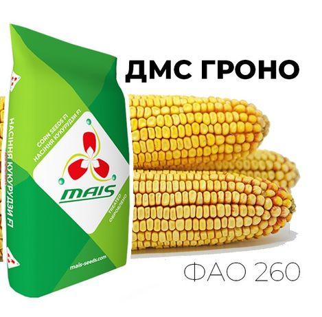 Семена кукурузы Маис ОРИГИНАЛ