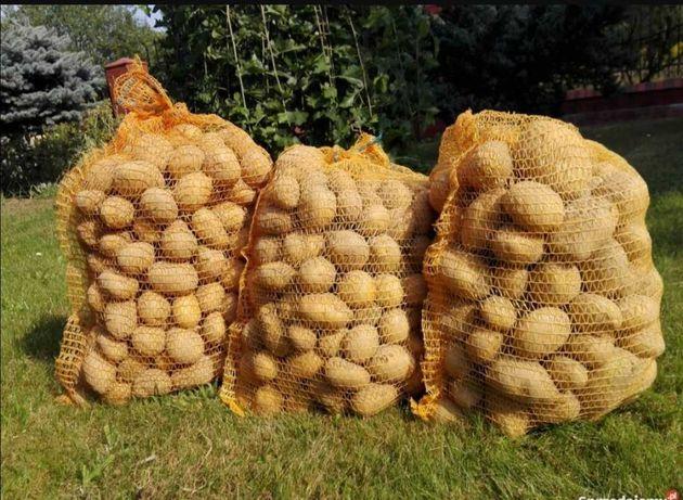 Ziemniaki smacznych odmian.